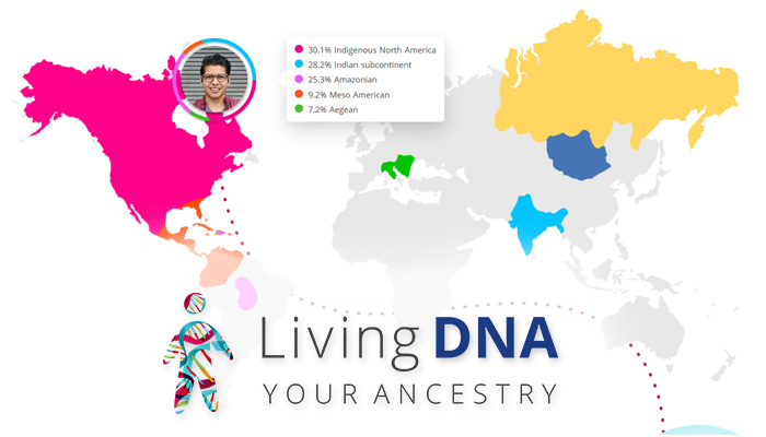 Living DNA – DNA Ancestry Test – Review